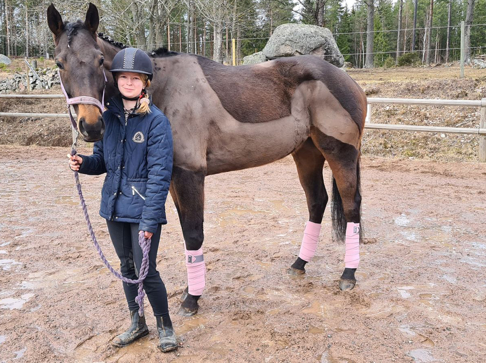 Lova RGH häst