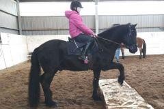 Blackie2
